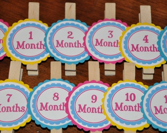 Photo Clips. Pink. Blue. Yellow. Bright Photo Clips. Photo Banner. Set of 13. Newborn-12 Months. First Birthday