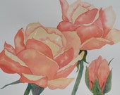 Art, Fine Art-Watercolor Painting of About Face Roses-Floral