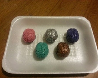 Brain Magnets, set of 5
