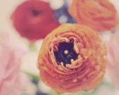 Flower Photography, Ranunculus, Still Life Photo, Vintage Colors, Orange, Soft, Home Decor, Shabby Chic, Dreamy Photograph, Bedroom Art