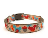 "1"" Dog Collar Squirrels are Nuts buckle or martingale collar"