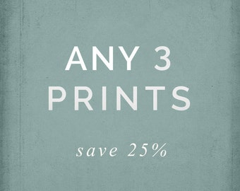 Choose Any 3 Prints - Photo Set, 8x8, 8x10 or 8x12, Your Choice, Save - landscape, nature photography