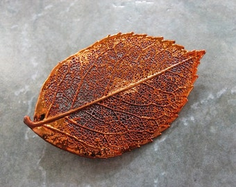 Sale - Free US Shipping - Real Leaf Brooch/Pin and Pendant - Copper - Rose