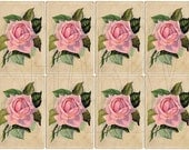 Shabby Chic Pink Roses Digital Collage sheet for scrapbook and cards DC704
