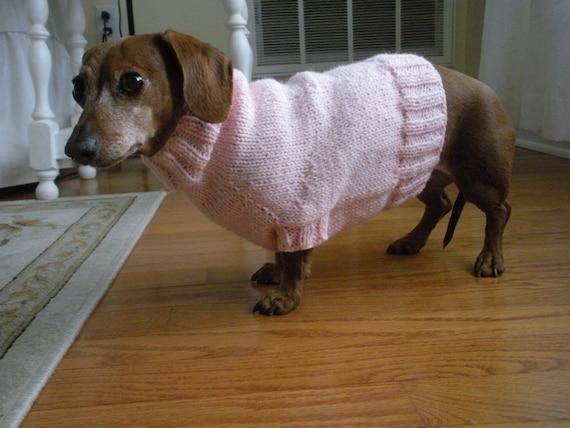 Simple Sweater Pattern For Mini Dachshund Doxie Dachshund