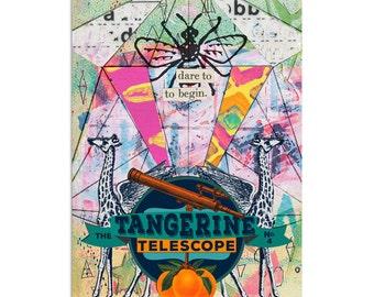 No. 4 The Tangerine Telescope