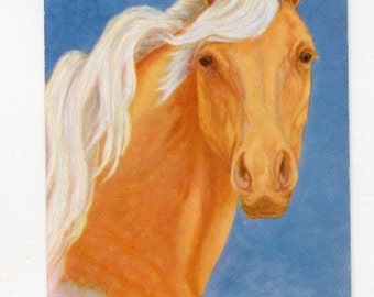 vintage horse postcard, Pal o' Mine Head of a horse by L.H. Larsen Beautiful postcard, American vintage postcard, palomino postcard