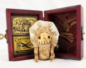 Blossom  - a little monster skelly in her own traveling trunk