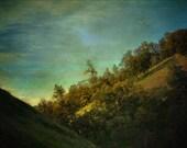 Oak Pine Hillside Photography Rural Landscape Print, 12 x 16, 11 x 17, 11 x 14, 8 x 10 Rustic Wall Art Home Decor
