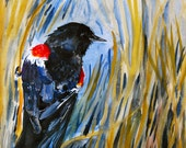"Watercolor Paining, Original Bird Art, Red Winged Black Bird, 11""x15"""
