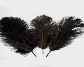 Ostrich's feather - black