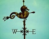 Seahorse Weathervane Art, Teal Beach Decor, Turquoise Art, Antique Weathervane, Aqua Seahorse Wall Decor,Miami FL Print,Seahorse Photography