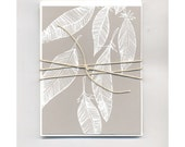 Set of 6 White Feathers Design Blank Cards