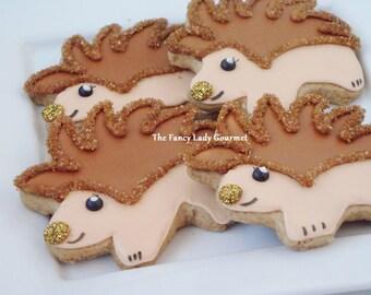 Woodland hedgehog cookies 1 dozen