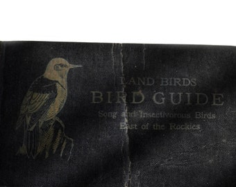 Reed Bird Guide 1920s Land Birds East of Rockies Fair