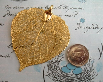 24k Gold Dipped ASPEN LEAF, Real Genuine Leaf Pendant, 1.5-2+ inch, LARGE, bridal woodland wedding jewelry precious solo