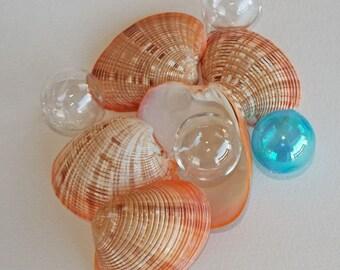 CALLISTA VENUS SHELLS (5), beach decor, wedding decor, ombre coloring, coastal decor, nautical decor, supplies for crafting