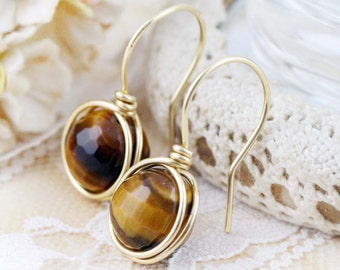 Wealth and Courage earrings - tiger eye