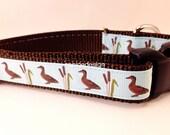 Dog Collar, Mallard, Ducks, 1 inch wide, adjustable, quick release, metal buckle, chain, martingale, hybrid, nylon