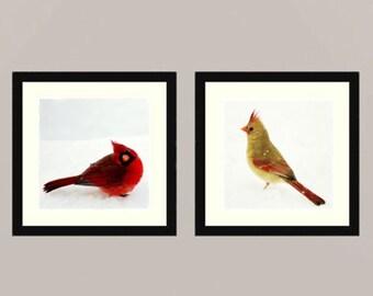 Cardinals set - Cardinal couple angry birds winter bird in snow Feathered friend bird watching Love bird wall decor Birder Fine Art two 8x8