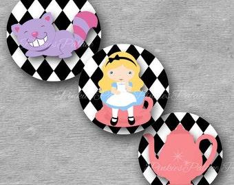 Alice Stickers Envelope Seals Stickers Birthday Stickers Birthday Favor Stickers  - Set of 24