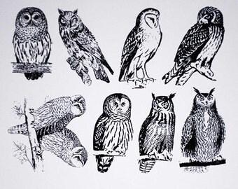 Owl Ceramic Decals, Glass Decals or Enamel Decals