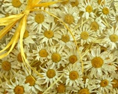 Dried White Daisies, Wedding Confetti, Confetti, Gift Box, Dry Flowers, Daisy, Flower Girl, White Confetti, Barn Wedding, Rustic, Decoration