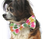 Pet Dog Bowtie-Tropical Rainbow Pineapple-Clip on Size large
