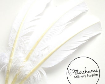 3 Turkey Quill Feathers for Millinery, Hats & Fascinators - Ivory