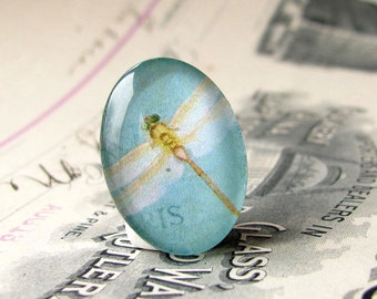 Aqua blue dragonfly, white wings, handmade 25x18mm glass oval cabochon, 25x18 cabochon, 18x25 18x25mm 18mm 25mm, wallpaper background