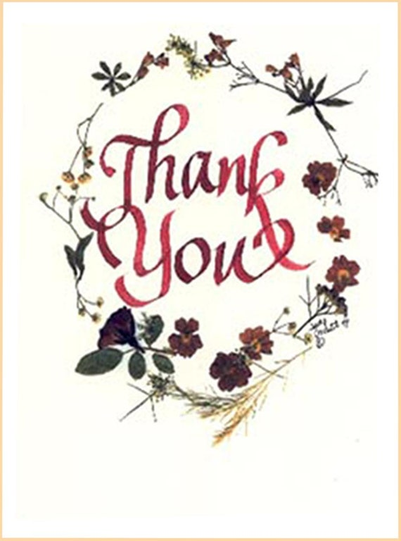Beautiful Thank You Cards thank you card beautiful thank you colorful pressed flowers