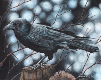 The Raven - 5 x 7 Fine Art Print - By Laura Airey Le Beautiful Raven Drawing