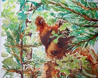 Watercolor Bear art - ORIGINAL Wall Art Painting Wild Brown Golden Bear peeking out of trees New Mexico 9x12