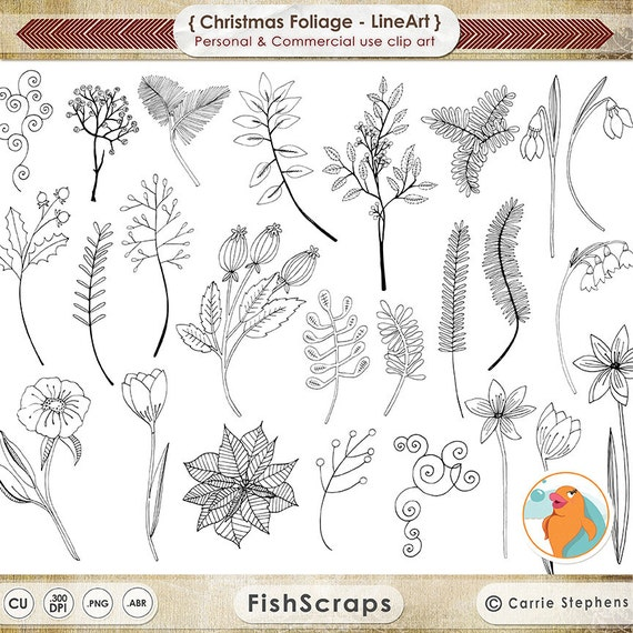 Christmas Flower Line Drawing : Christmas flower embroidery lineart holiday foliage