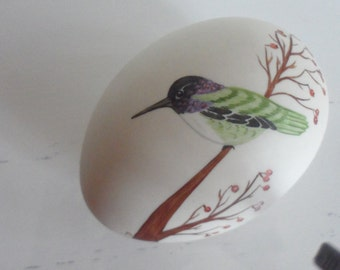 beautiful porcelain egg with costas  hummingbird   hand painted made by  nuttall numbered