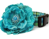 Teal Blue and Lime Green Gingham Dog Collar with Flower Accessory