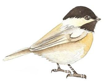 Chickadee - ACEO Art Bird Print of my original watercolor, painting by Lorisworld