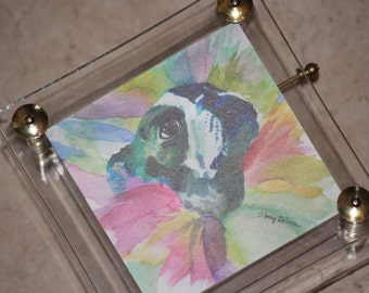 Watercolor Print Boston Terrier Musical Raindrops keep falling on my Head