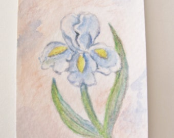 ACEO Original Watercolor Painting  Floral Still Life Trading Card Blue  Iris  Flower