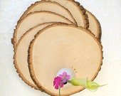 Set of 10 Large Rustic Wood Tree Slice Centerpieces Rustic Wedding Decorations Wooden Rounds