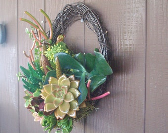 15inch living succulent willow branch wreath