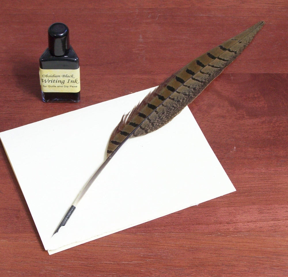 Pheasant Feather Quill Pen With Pointed Steel Nib Calligraphy