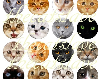 """Cats and Kittens, Cat Pins, Cat Magnets, Adorable Kitties, Cats 1"""" Flat Back Buttons, Pins, or Magnets, Cabochons,  12 Ct."""