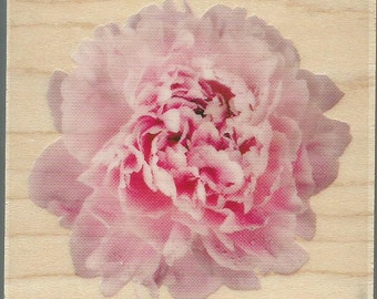Carnation Stamp  --  NEW  -- Wood Mounted Rubber Stamp -- Inkadinkado Brand --  (#1089)