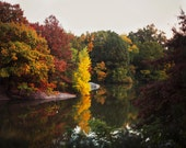 Autumn in Central Park - 8x10 Fine Art Photograph, New York City, Fall, Manhattan, Forest, Landscape, Nature, Pond, Water