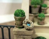 Potted plant in aged pot - Small - dollhouse miniature