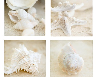 Art, Photography, Sale, Special, One, 2, or 4 Fine Art Prints, Wall Art,  Four Individual Images, Beach, Coastal, Cottage