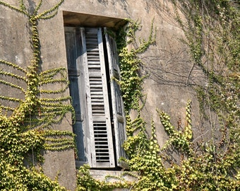 Rustic Photography - Farmhouse Decor - Country Wall Art - Greece Photography - Windows Ivy - Greek Print - European Cottage - Architecture