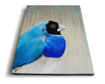 Blue Finch painting, Gouldian Finch art, Blue Songbird original canvas painting, 11x14 Rainy Day Blues