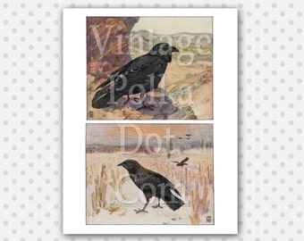 Crow Raven Graphics Vintage Printable Digital Collage Sheet Instant Download Scrapbooking Print